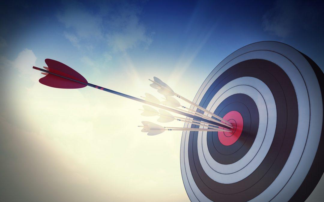 Strategija hitre rasti – 6 korakov do uspeha